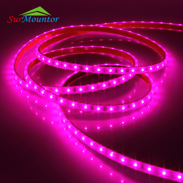 Buy cheap china led rope lights malaysia products find china led full spectrum china made led grow light for germanyindoor greenhouse top led rope grow aloadofball Gallery