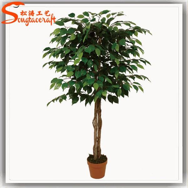 Catálogo de fabricantes de Nuevo Ficus Artificial de alta calidad y ...