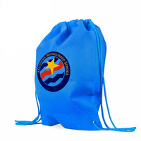 SMETA 4 Pillars Audit Factory Make Small Non Woven Promotional Reusable Shopping Drawstring Bag
