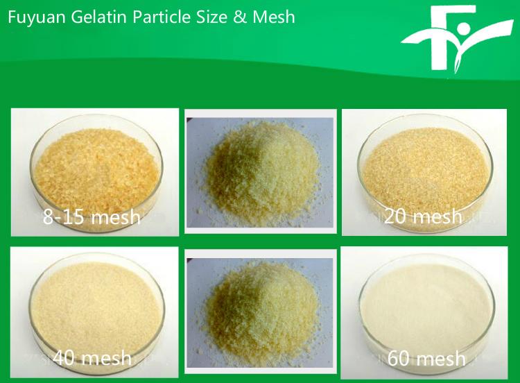 1.Fuyuan Gelatin Particle Size & Mesh