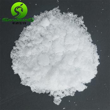 HOT SALE!! Factory supply Piracetam 7491-74-9 EP grade 99.9 powder