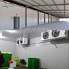 Best price fruit and vegetables cold room manufacture in China