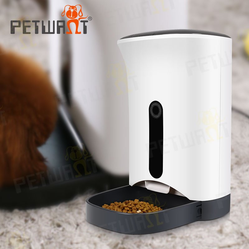 com pets dp dog programmable leshp automatic xaha food feeder animal pet amazon cat dispenser