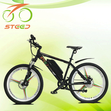 fashion china ebike sunny with mag wheels