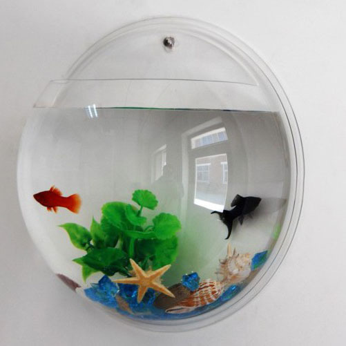 Free Shipping 1piece Acrylic Wall Mounted Fish Tank / Wall ...