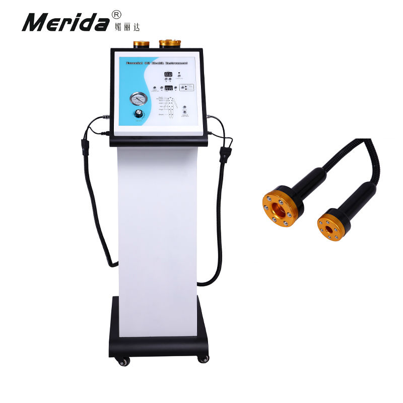 Vacuum & Far Infrared China Meridian Therapy Instrument