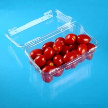 Hot Sale Biodegradable Clamshell Plastic Fruit Box Clear PET Blister Fruit Packaging Containers Factory Supplier
