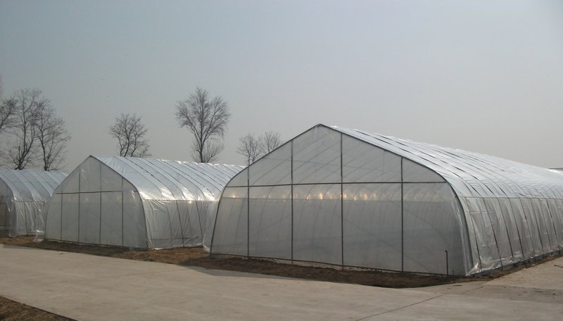single arch greenhouse/tunnel greenhouse garden for agriculture production