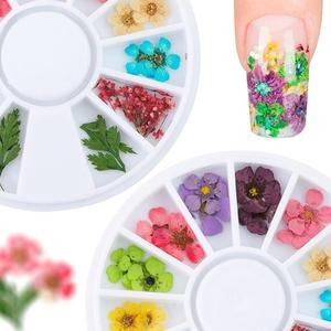 Real 3D Dried Flower Leaves Nail Art UV Gel Decoration