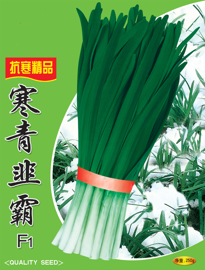 Yellow Garlic Chives Seeds Leek Seeds Chinese Chives Seeds For ...