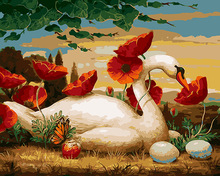 Swan and flower diy paint by numbers l oil painting by numbers
