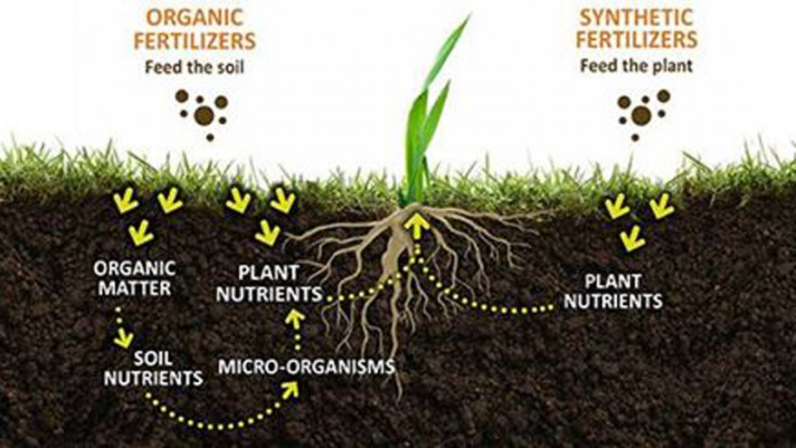 Slow Release Agricultural Bio Products Organic Fertilizer Suppliers, View  High Quality Organic Fertilizer Suppliers, NEW POWER Product Details from