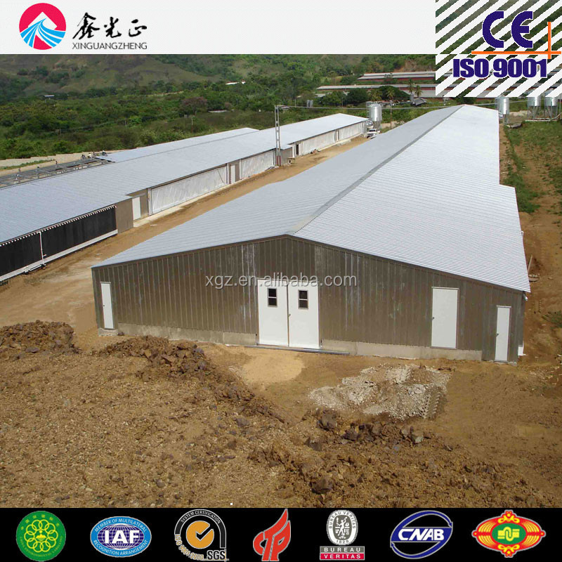 Automated cages for layers and broilers, modern steel poultry farm