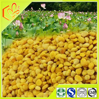 Enhance immunity of natural pollen wholesale