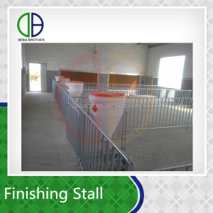 Pig livestock for sale finishing stall hot dip galvanized pipe big farming equipment