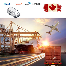 1x20gp/1x40gp Container Shipping Sea Freight Shipping China to Ottawa Canada Transport Containere