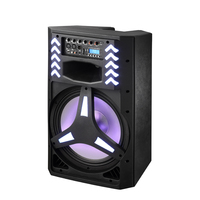 Polinata 15 inch subwoofer speaker bluetooth OEM Multimedia Power Amplifier for Active Dj sound box with Colored LED Light