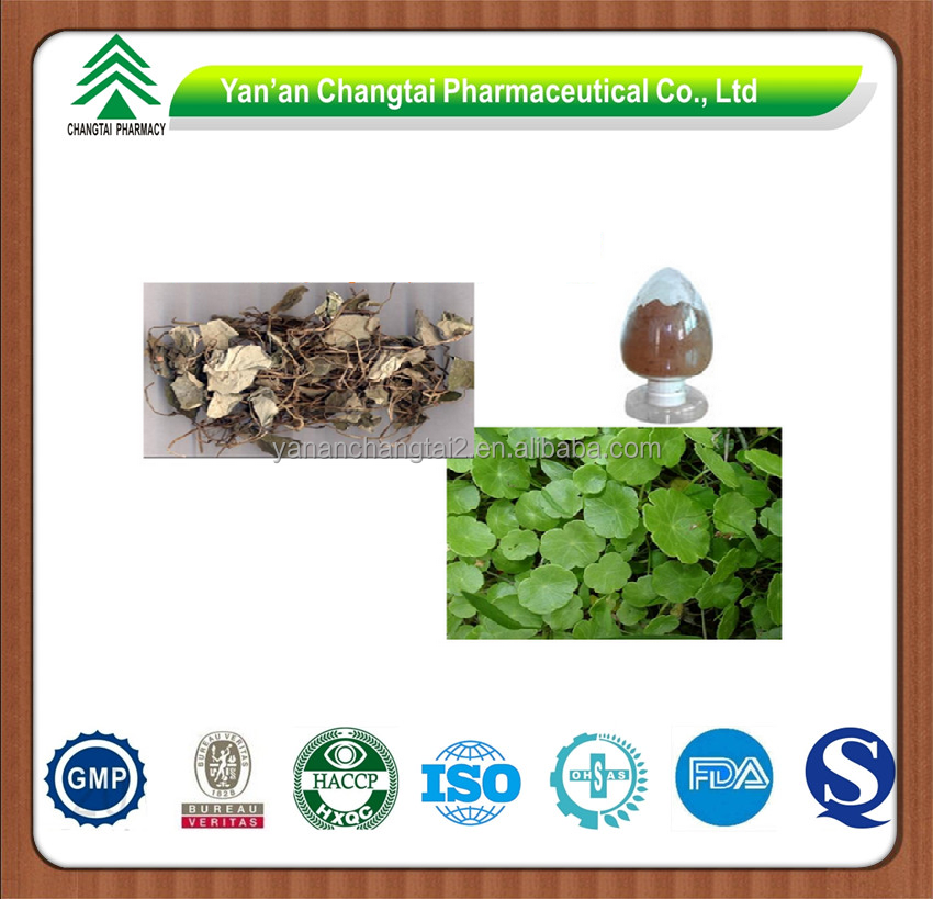 GMP factory supply Herb natural Cristina Herba Lysimachiae extract