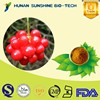 100% Natural herb powder schisandra berry extract Schisandrins 9% Schisandrin B 1.75%