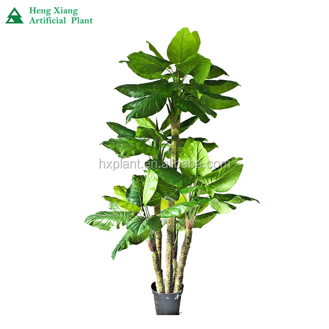 Making Artificial Banana Potted Plant Fake Banana Bonsai Tree Buy Good Quality Artificial Banana Potted Plant Bonsai Tree Artificail Banana Tree Bonsai On Sale Imitation Banana Tree Bonsai For Indoor Decor Product On Alibaba Com