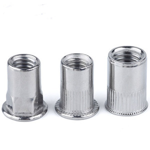 A2 A4 SS304 SS316 Stainless steel Knurled Flat Head Countersunk Head Hex Head Rivet Nut