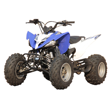 Nuovo zongshen <span class=keywords><strong>250cc</strong></span> <span class=keywords><strong>atv</strong></span> <span class=keywords><strong>quad</strong></span> bike (MC-)