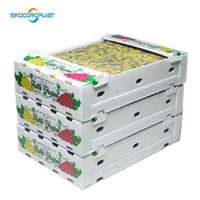 Fruit Packing Corrugated PP Plastic Flute Box