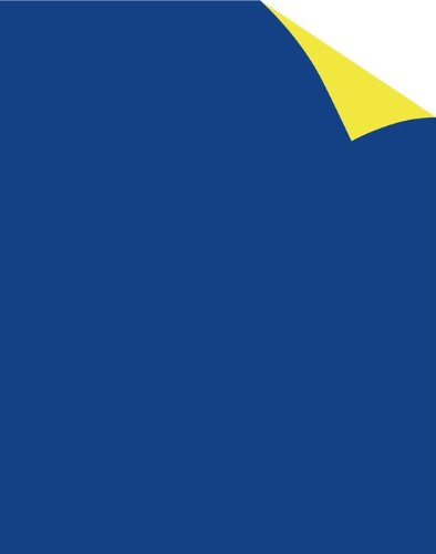 Royal Brites 2 Cool Colors Poster Board, 22 x 28 Inches, Blue Yellow, 5-Sheet Pack (24351)