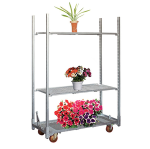 Transport Hand Carts Push double Layers Platform Trolley price made in China