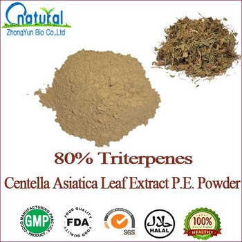 China Best Manufacturer Supplied Centella Asiatica Leaf Extract ...