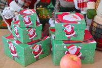 China Paper craft Christmas Holidays Greeting Card Making Box Set LR1024