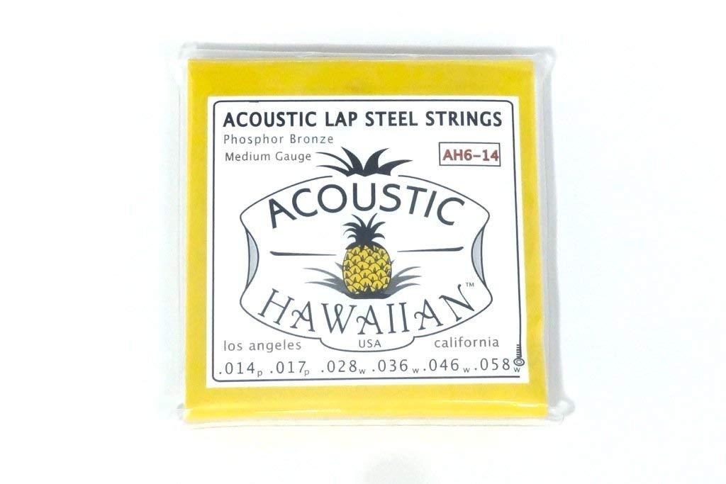 Asher Guitars Acoustic Hawaiian Lap Steel Strings - Single Set