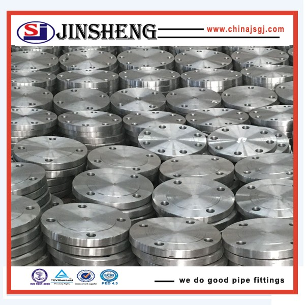 Din2527 DN10-DN350 PN100 blind flange with anti-rust oil