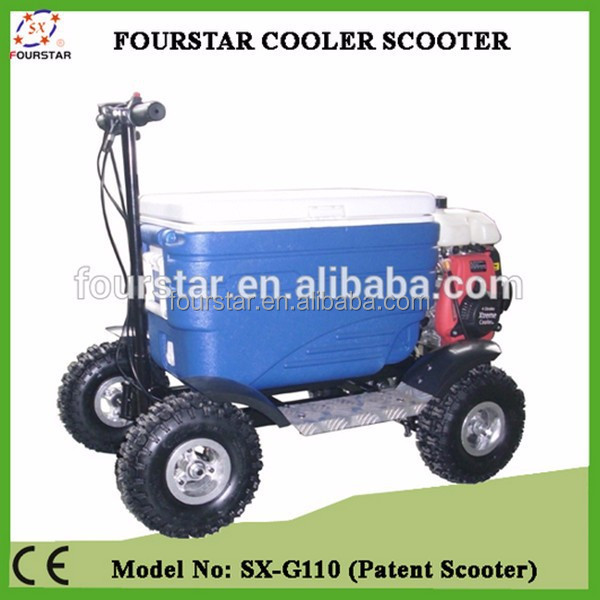 New design gas wholesale cooler scooter