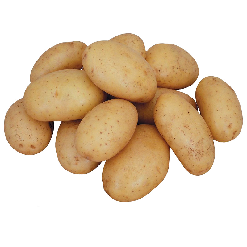 Fresh wholesale potato product