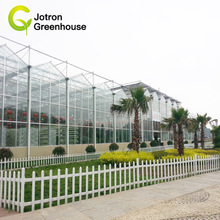 Commercial Agricultural Venlo Greenhouse for Sale