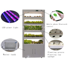 The Cheapest Hot Sale Resturant/Home Hydroponic Leafy Vegetables Planter Cultivator