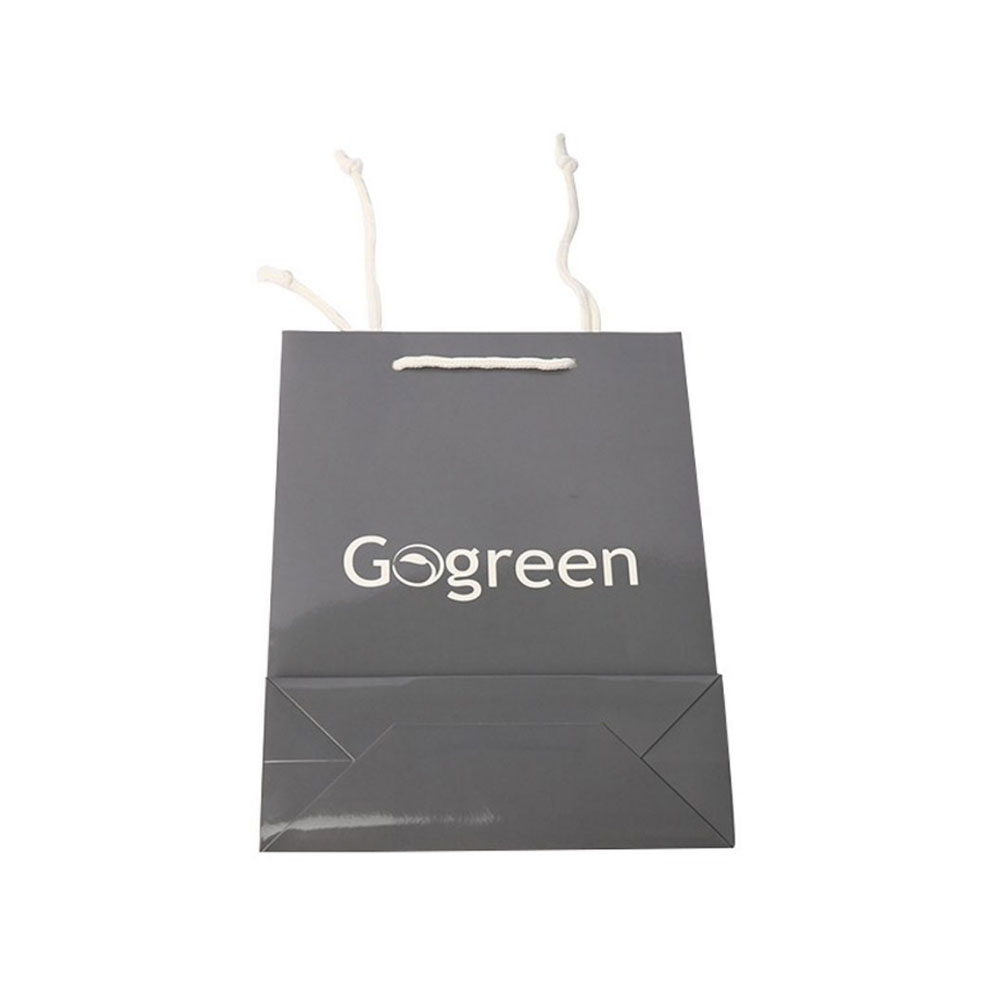 New Design Free Sample Customized Logo Printing Paper Bags With Whole