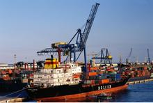 Sea shipping LCL agents DDP sea freight service China to India
