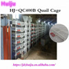 Automatic poultry farm equipment design 6 layers quail cages for sale