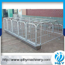 Galvanized Pipe Pig Gestation Stall