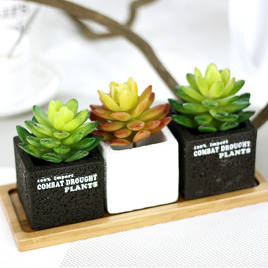 artificielle cactus plantes achetez des lots petit prix artificielle cactus plantes en. Black Bedroom Furniture Sets. Home Design Ideas