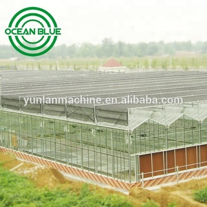 OCEAN BLUE polycarbonate venlo commercial greenhouse for tomato