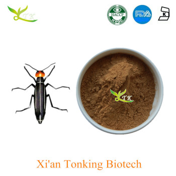 Factory Supply 98% Bulk Cantharidin Blister Beetle Extract - Buy Blister  Beetle Extract Product on Alibaba com