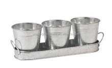 Set Of 3 Mini Metal Garden Herb/Plant/Flower Pots with Galvanized Zinc Tray