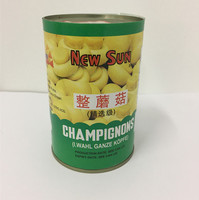china wholesale canned whole mushroom in brine