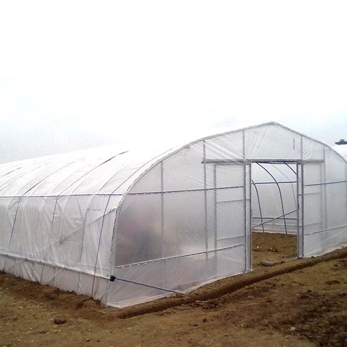 Large Single tunnel Plastic Agricultural Greenhouse PE flim Hot Sale Hydroponic system greenhouse for tomato