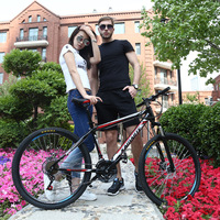 Wholesale 26 Inch 21 Speed Mountain Bike From China/Chinese aluminum mountain bicycle/molden style disc mtb