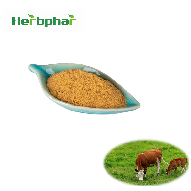 Natural Animal Extracts Ox Bile Extract Powder Supplement - Buy Ox Bile  Extract Powder,Ox Gall,Ox Bile Supplement Product on Alibaba com