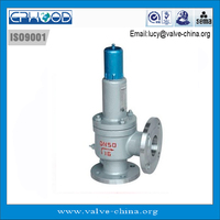 STGS Series spring loaded high temperature Safety Valve for steam